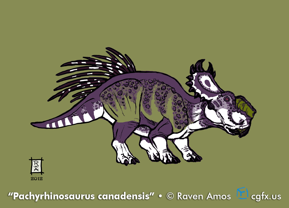 Pachyrhinosaurus canadensis in purple and green.