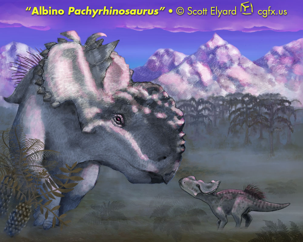 Albino Pachyrhinosaurus at Sunset