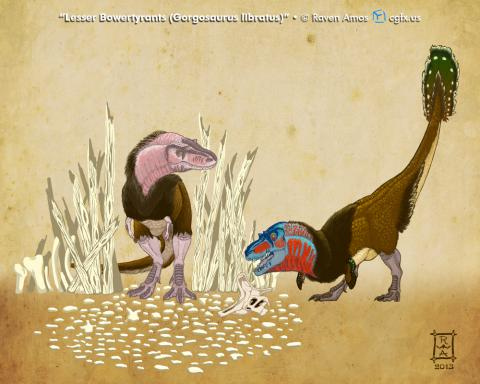 Lesser Bowertyrant (Gorgosaurus libratus)