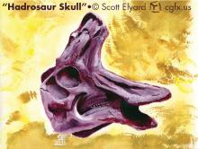 Watercolor of an Hadrosaur Skull